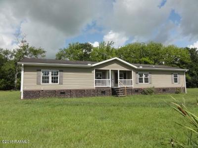Breaux Bridge Single Family Home For Sale: 1049 Aldus Johnson Road