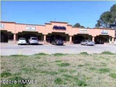 Commercial For Sale: 705 S Morgan