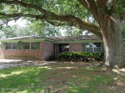 Iberia Parish Single Family Home For Sale: 4212 South Drive