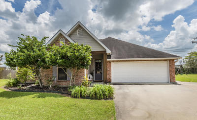 Copperfield South Single Family Home For Sale: 135 Devon Way