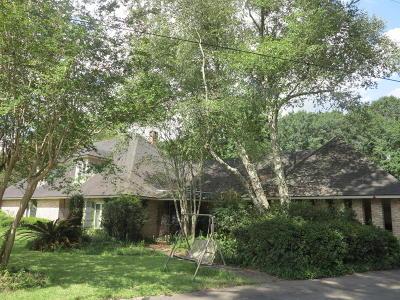 Single Family Home For Sale: 300 Peg Lane