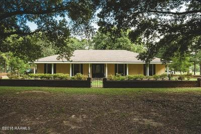 Arnaudville Single Family Home For Sale: 197 Connie Drive
