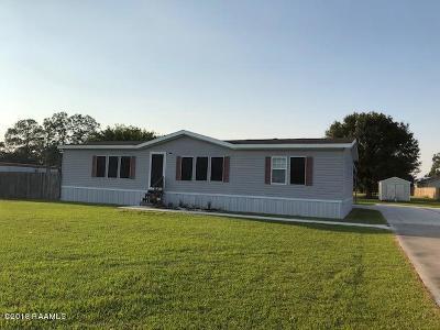 Breaux Bridge Single Family Home For Sale: 1005 Amelie Drive