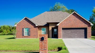 Breaux Bridge Single Family Home For Sale: 1139 Bridgetown Lane