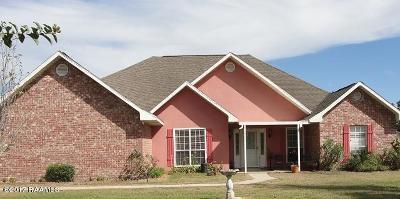 St Martinville, Breaux Bridge, Opelousas Single Family Home For Sale: 131 Old Spanish Road