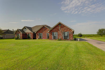 Franklin Single Family Home Active/Contingent: 10127 Hwy 182