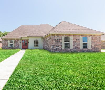 St Martinville, Breaux Bridge, Opelousas Single Family Home For Sale: 260 Christian Point Road