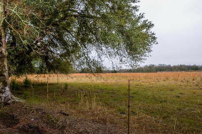 Acadia Parish Farm For Sale: St Louis Drive