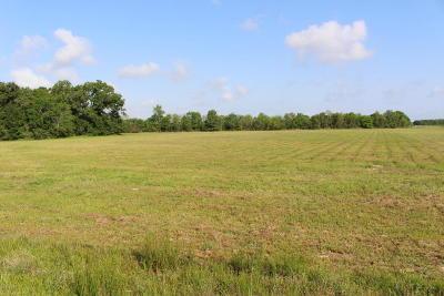 Acadia Parish Residential Lots & Land For Sale: 460 Fleur De Lis Lane