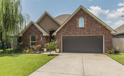 Highland Ridge Single Family Home For Sale: 703 Peak Run