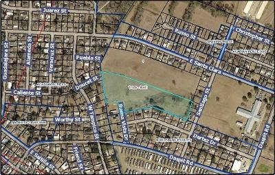 Iberia Parish Farm For Sale: Tract B Santiago Street