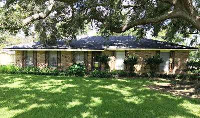 Vermilion Parish Single Family Home For Sale: 21028 S La Hwy 82