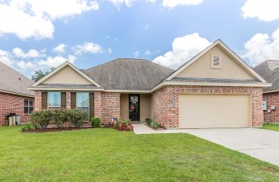 Broussard Single Family Home For Sale: 203 Spanish Moss Lane