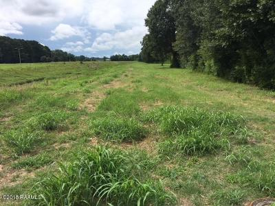 Lafayette Residential Lots & Land For Sale: 212 Sheila Drive