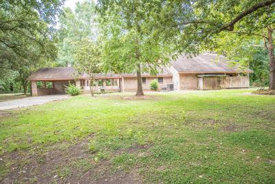 Breaux Bridge Single Family Home For Sale: 1212 A Declouet Hwy