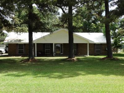 St Martinville, Breaux Bridge, Opelousas Single Family Home For Sale: 3420 Hwy 104