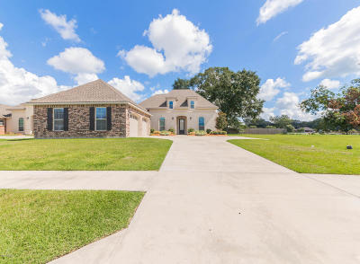 Carencro Single Family Home For Sale: 200 Meadowland Drive