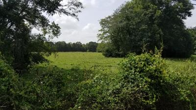 St Martinville, Breaux Bridge, Opelousas Farm For Sale: 2100 Hwy 742