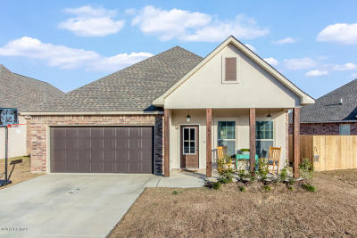 Youngsville Single Family Home For Sale: 106 Gray Birch Loop