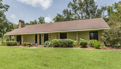 Carencro Single Family Home For Sale: 5113 NW Evangeline Trwy