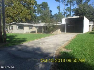 New Iberia Single Family Home For Sale: 214 Terry Michael Street