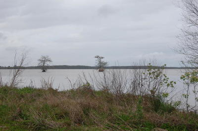 Cameron Parish Residential Lots & Land For Sale: Lake Lot 1 Louisiana Avenue