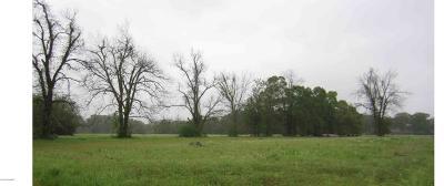Farm For Sale: 201 Sonnier Road