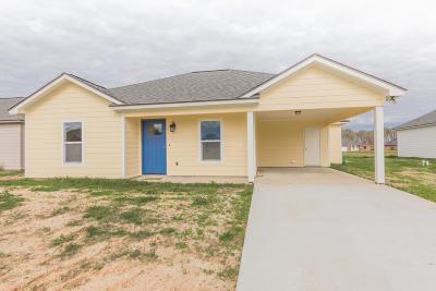 Breaux Bridge Single Family Home For Sale: 1019 Lillian Michel Drive