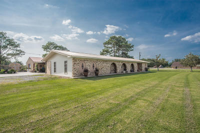 St Martinville, Breaux Bridge, Abbeville Single Family Home For Sale: 10010 La Hwy 167