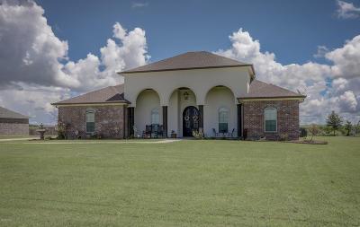 Patterson Single Family Home For Sale: 263 Foxglove Drive Drive