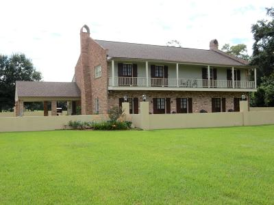 St Martinville, Breaux Bridge, Abbeville Single Family Home For Sale: 13023 Pumping Plant Road