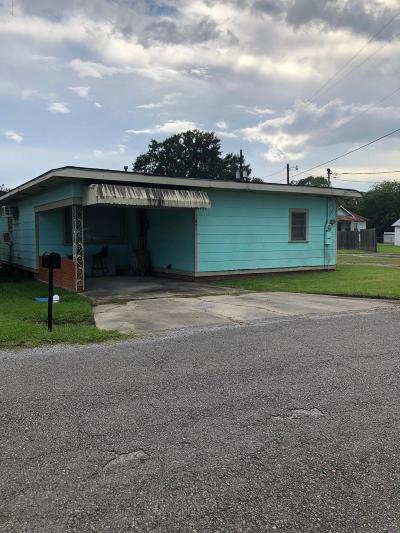 Abbeville  Single Family Home For Sale: 607 Jean Edias Street
