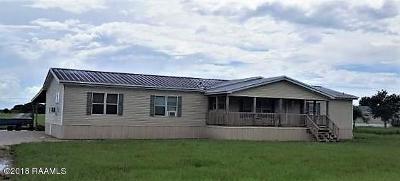 Duson Single Family Home For Sale: 8817 W Congress Street