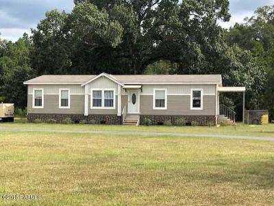Single Family Home For Sale: 1340 Leman Road