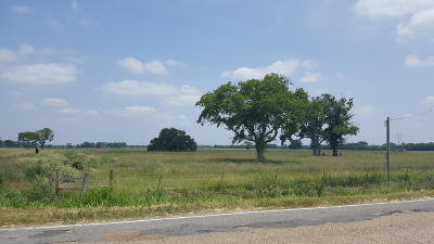 St Landry Parish Farm For Sale: 4000blk Hwy 358