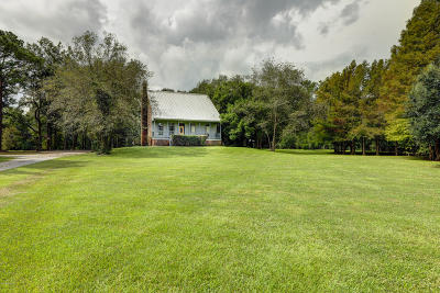 Abbeville  Single Family Home For Sale: 10219 Broussel Drive