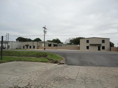 Commercial For Sale: 1933 Youngsville Highway(Hwy 89)