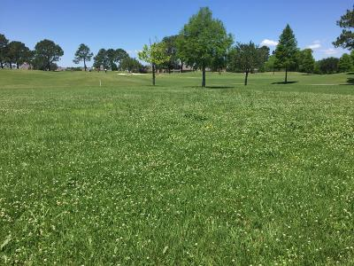 St Martin Parish Residential Lots & Land For Sale: Le Triomphe Pkwy