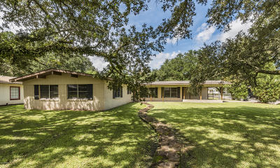 Iberia Parish Single Family Home For Sale: 719 Prioux Street