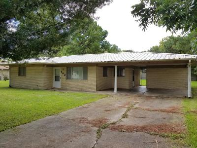 Iberia Parish Single Family Home For Sale: 702 Yvonne Street