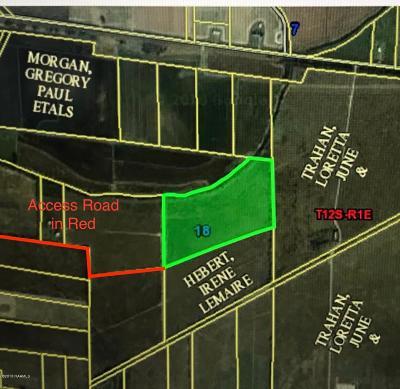 Farm For Sale: Tbd Meridian Line Road