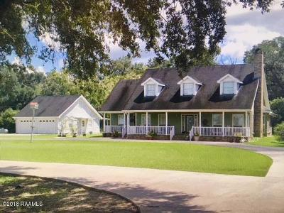 Abbeville  Single Family Home For Sale: 18729 Russ Road