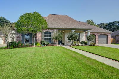 Youngsville Single Family Home For Sale: 204 Anslem Drive
