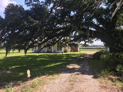 Arnaudville Single Family Home For Sale: 1586 Bushville Hwy