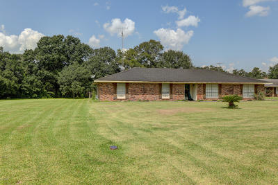 Franklin Single Family Home For Sale: 4398 Irish Bend Road