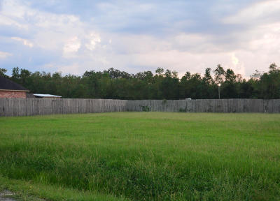 Carencro LA Residential Lots & Land For Sale: $33,500