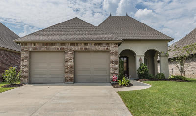 Single Family Home For Sale: 116 Meadowbrook Drive