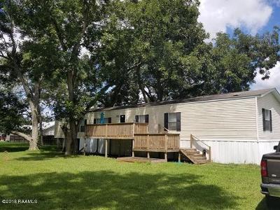 Mermentau Single Family Home For Sale: 205 4th Street