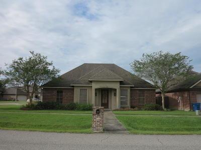 Lafayette Single Family Home For Sale: 201 Chevalier Boulevard