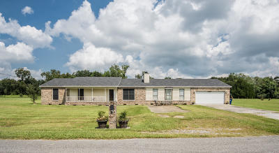 St Martinville, Breaux Bridge, Abbeville Single Family Home For Sale: 2119 Sunshine Drive